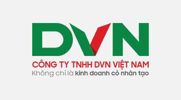 mb-cong-ty-tnhh-dvn-viet-nam
