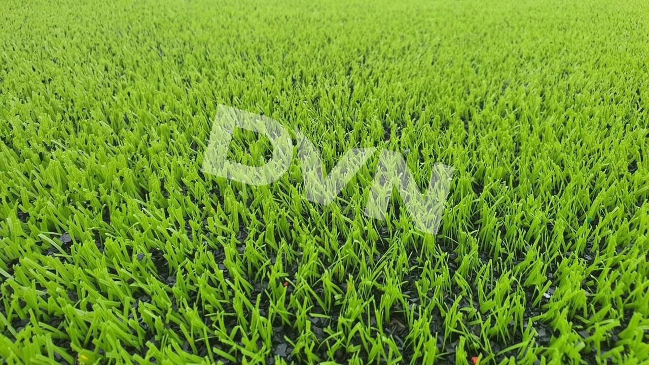 Thảm cỏ nhân tạo sân bóng là gì 1