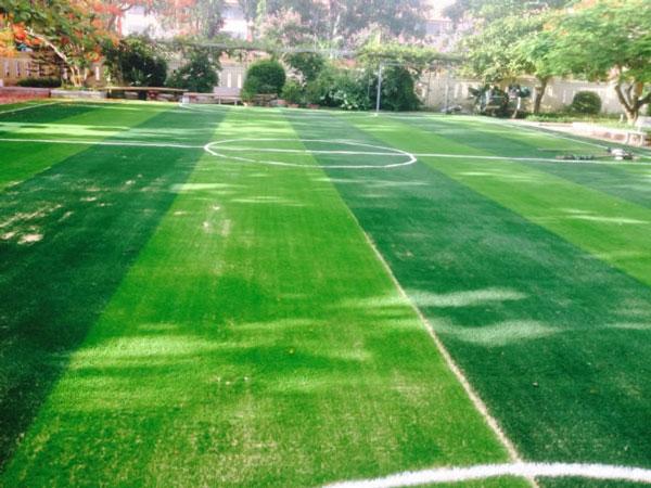 Dịch vụ bảo dưỡng sân cỏ nhân tạo Quảng Ngãi có tốt không? 1