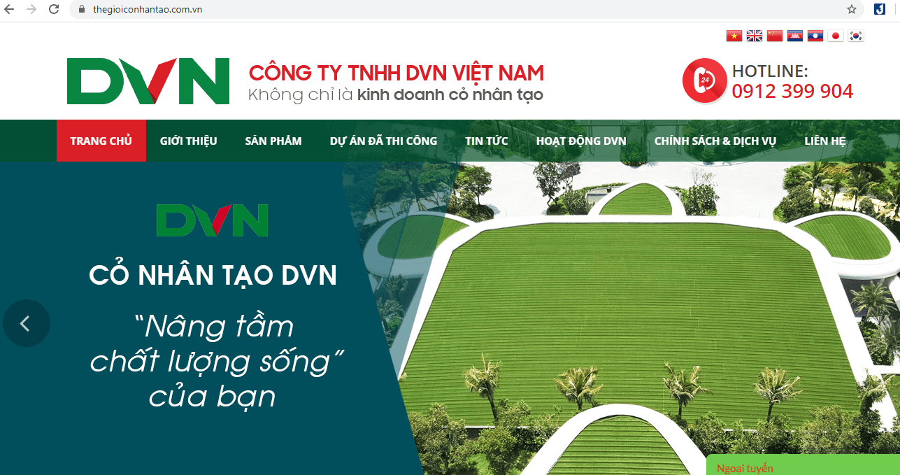 Đơn vị cung cấp cỏ hàng đầu Việt Nam DVN
