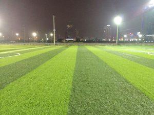 Các màu cỏ khác nhau đến từ đâu? 2