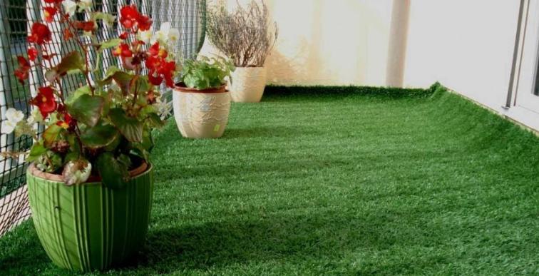 cỏ nhân tạo chất lượng Quảng Trị