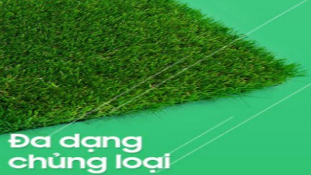 cong-ty-co-nhan-tao-tai-Hue