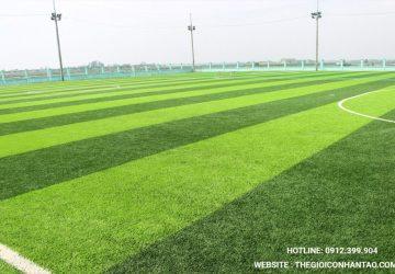 DVN là địa chỉ chuyên bảo dưỡng sân cỏ nhân tạo Hà Nam