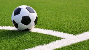 Sân bóng hiện đại ngày nay nên được sử dụng các loại cỏ nào? 1