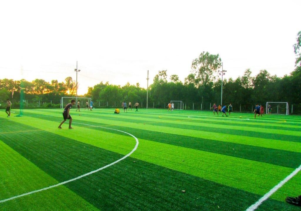 Sân bóng đá cỏ nhân tạo Công ty Cổ phần doanh nhân trẻ Ninh Thuận đạt chuẩn
