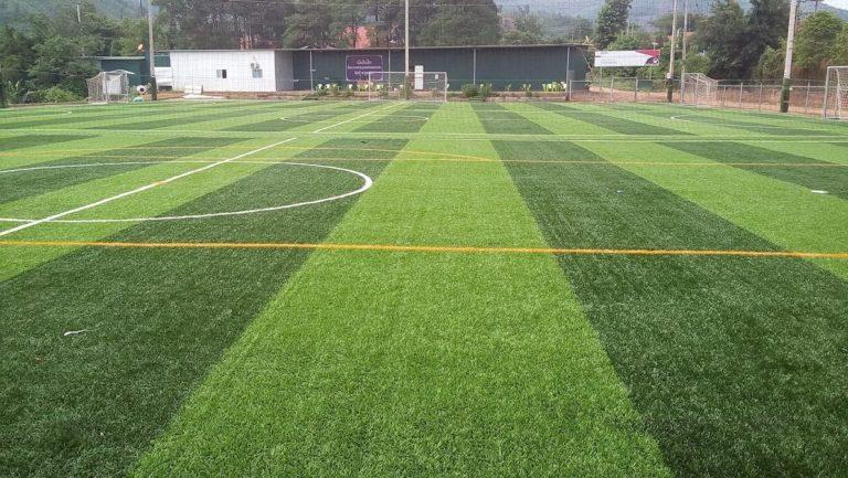 Thực trạng mặt hàng cỏ nhân tạo tại tỉnh Quảng Ngãi 1