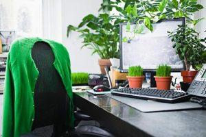 Các ý tưởng trang trí cỏ nhân tạo trong văn phòng 2
