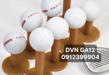 DVN GA12(1)