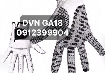 DVN GA18(1)