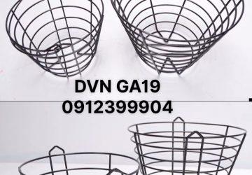 DVN GA19