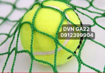 DVN GA22