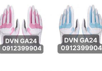 DVN GA24