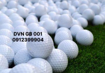 DVN GB 001
