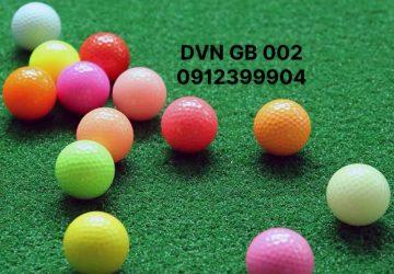 DVN GB 002