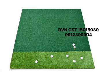 DVN GST 15015030