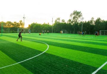 Kinh doanh sân bóng cỏ nhân tạo