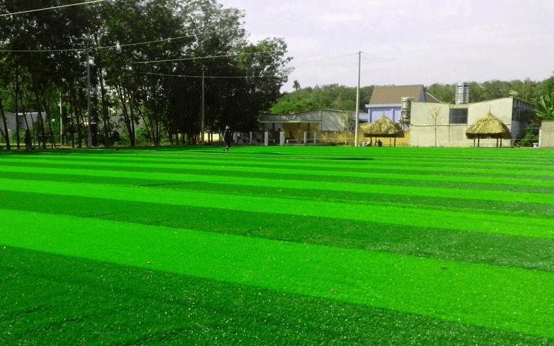 Ưu điểm khi sử dụng cỏ thanh lý sân bóng