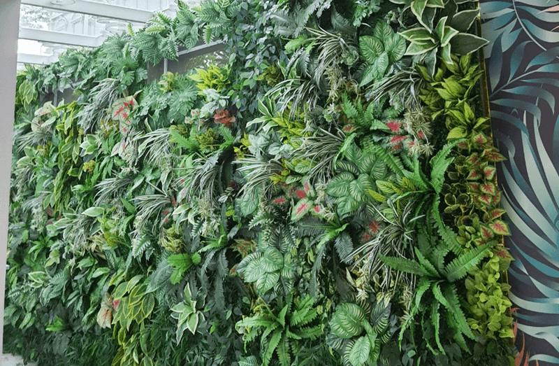Vách cỏ nhựa cỏ cây trang trí